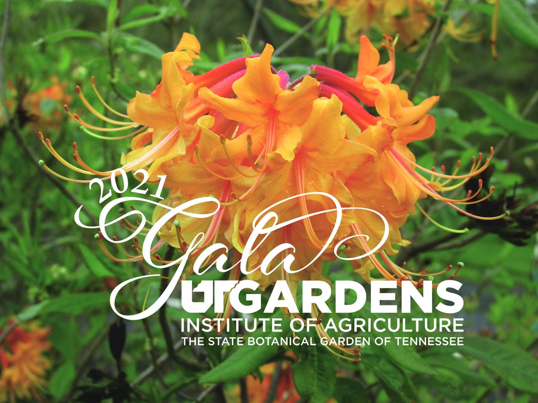 2020 UT Gardens Gala